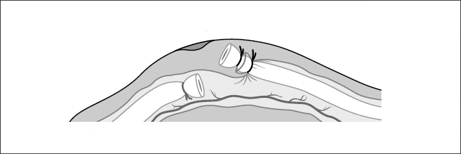 Figure_01_02